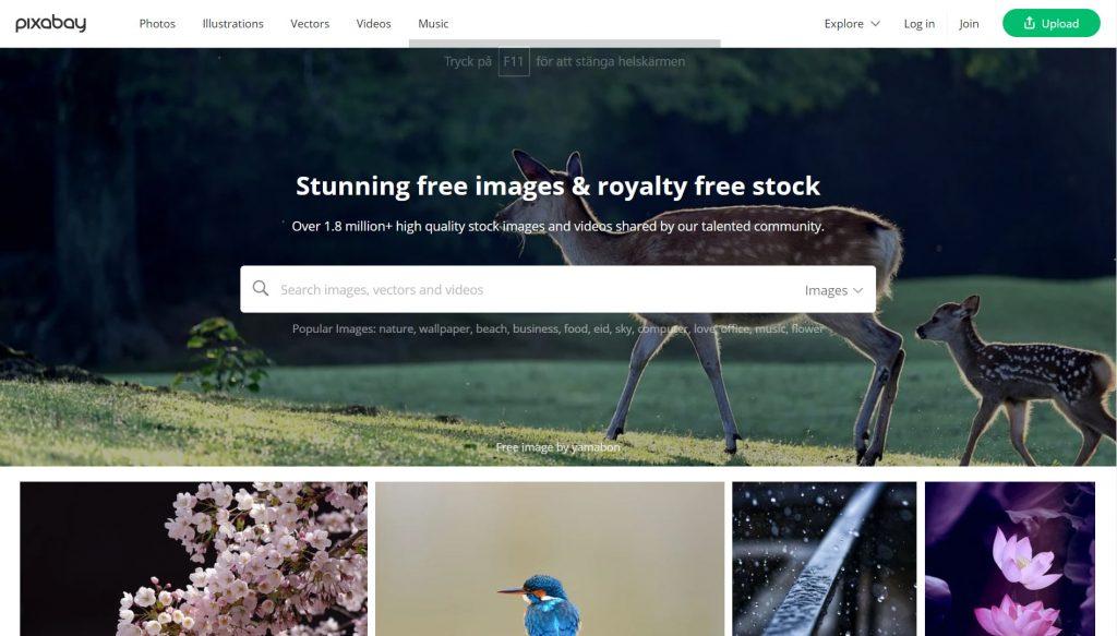 Pixabay - gratis bilder, illustrationer, video och musik med grym kvalitet